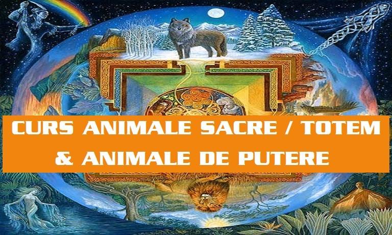 CURS ANIMALE SACRE TOTEM si ANIMALE DE PUTERE