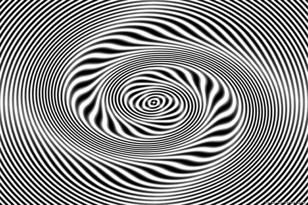 zebra hypnotic