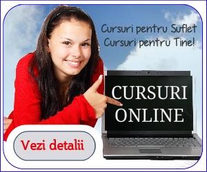 300x250 cursuri online